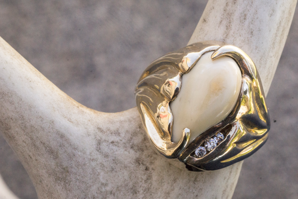 Elk Tooth Ring